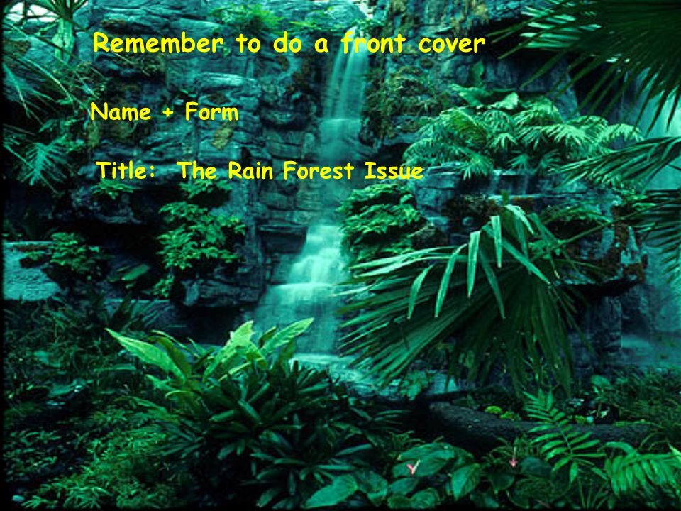 Remember to do a front cover Name + Form Title: The Rain Forest Issue