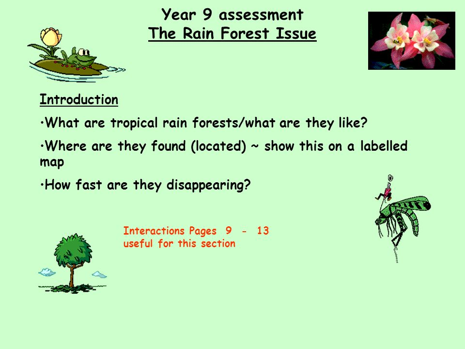 Year 9 assessment The Rain Forest Issue Introduction What are tropical rain forests/what are they like.