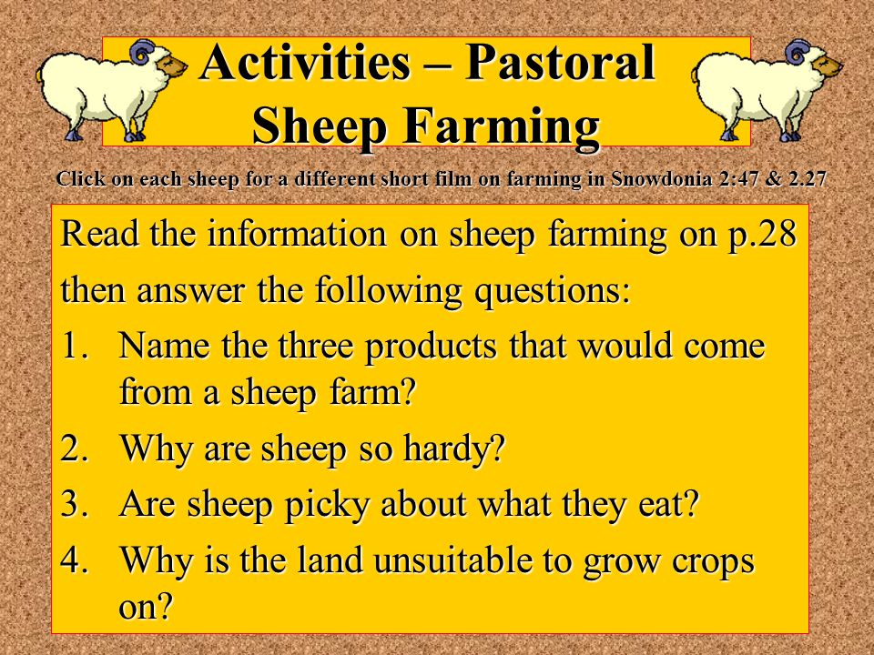 Activities – Pastoral Sheep Farming Read the information on sheep farming on p.28 then answer the following questions: 1.Name the three products that would come from a sheep farm.