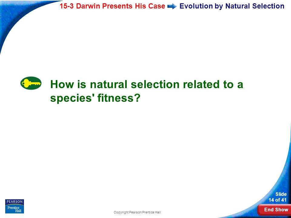 End Show 15-3 Darwin Presents His Case Slide 14 of 41 Copyright Pearson Prentice Hall Evolution by Natural Selection How is natural selection related