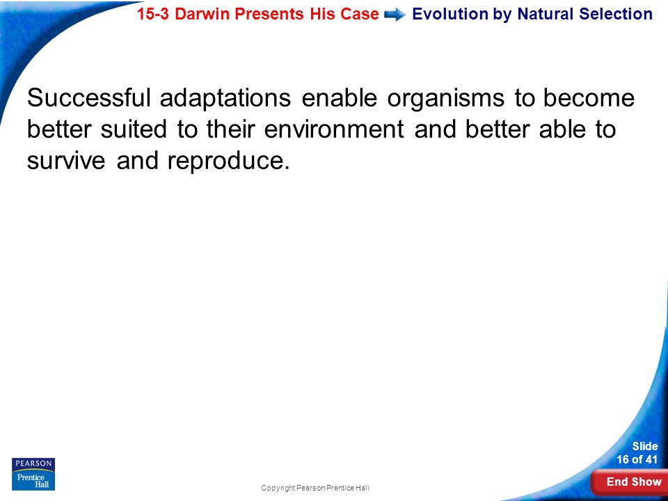 End Show 15-3 Darwin Presents His Case Slide 16 of 41 Copyright Pearson Prentice Hall Evolution by Natural Selection Successful adaptations enable org