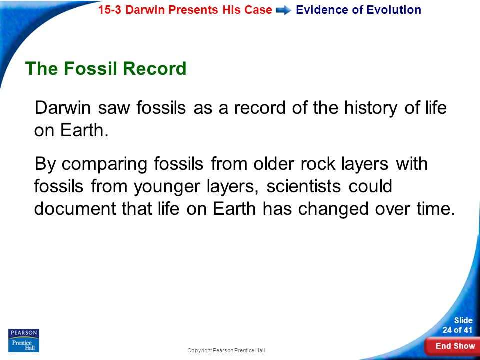 End Show 15-3 Darwin Presents His Case Slide 24 of 41 Copyright Pearson Prentice Hall Evidence of Evolution The Fossil Record Darwin saw fossils as a