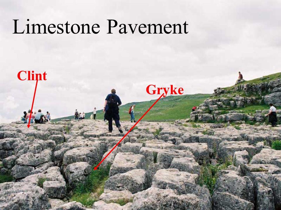 Limestone Pavement Clint Gryke