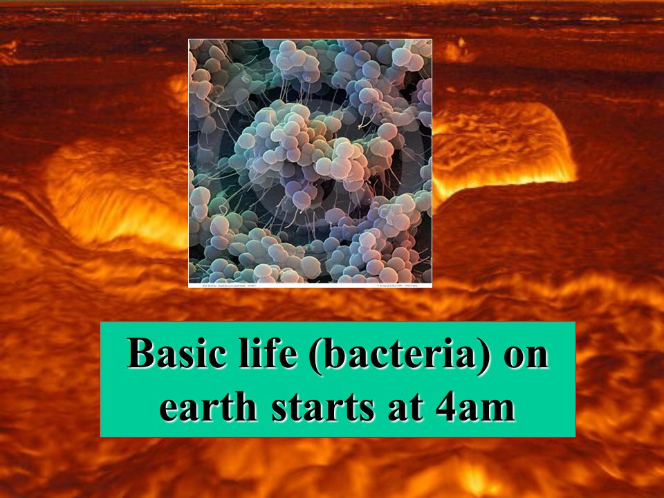 Basic life (bacteria) on earth starts at 4am