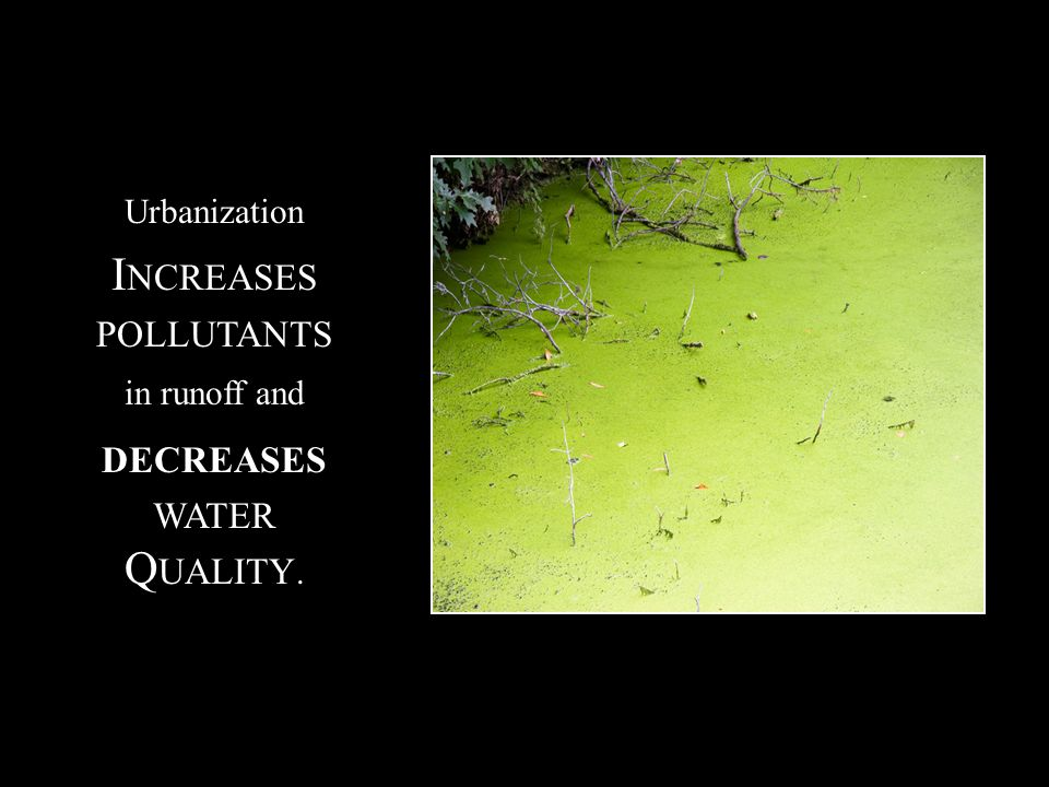 Urbanization I NCREASES POLLUTANTS in runoff and DECREASES WATER Q UALITY.