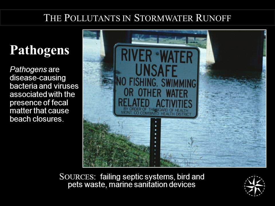 Pathogens Pathogens are disease-causing bacteria and viruses associated with the presence of fecal matter that cause beach closures.