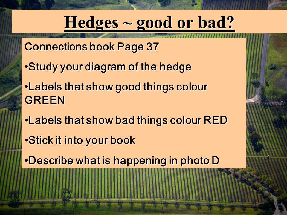 Hedges ~ good or bad.