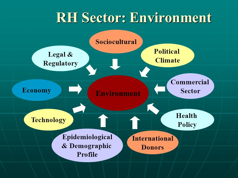 RH Sector: Environment Environment Economy Political Climate Commercial Sector Epidemiological & Demographic Profile Legal & Regulatory Health Policy