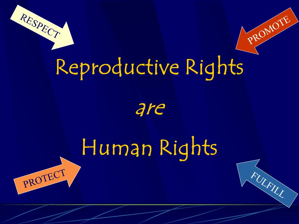 Reproductive Rights are Human Rights RESPECT PROTECT FULFILL PROMOTE