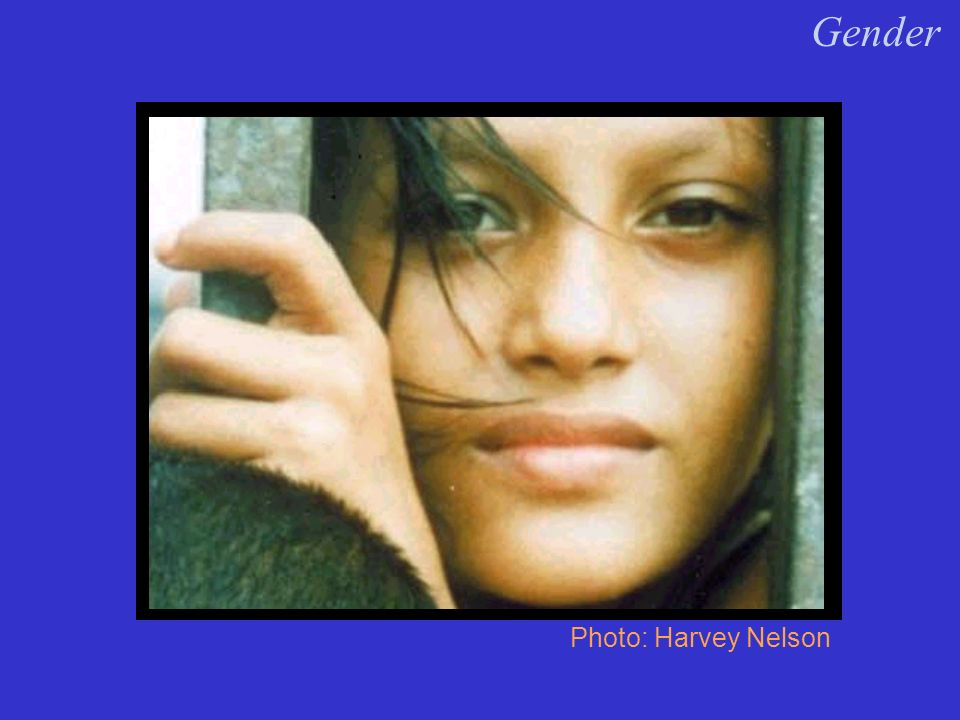 Photo: Harvey Nelson Need new photo