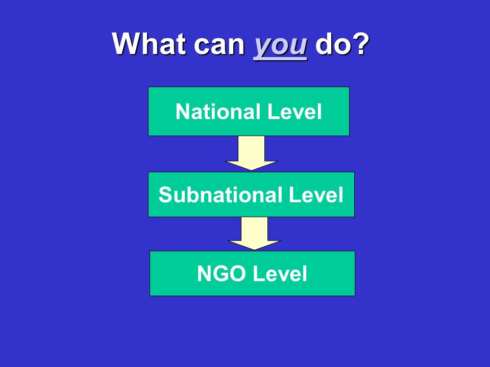 What can you do NGO Level Subnational Level National Level