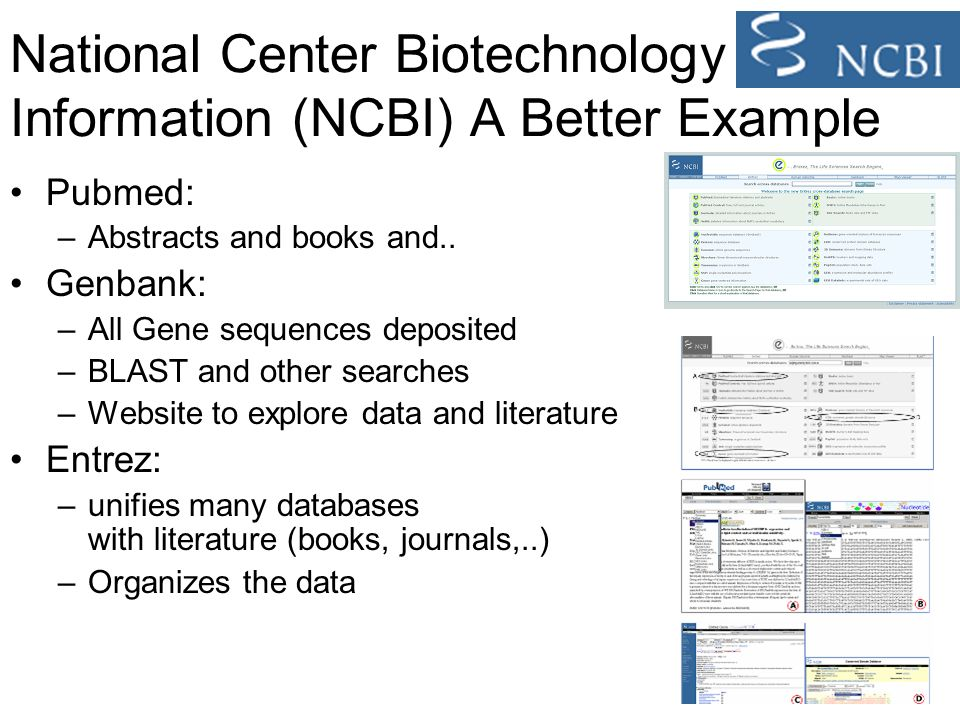 National Center Biotechnology Information (NCBI) A Better Example Pubmed: –Abstracts and books and..