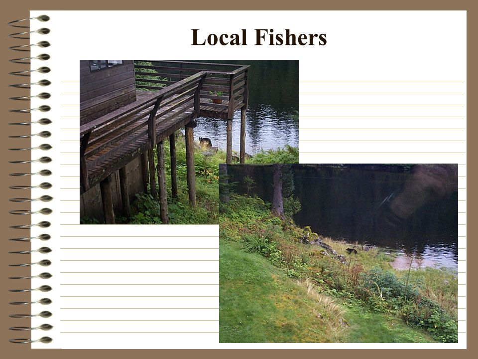 Local Fishers