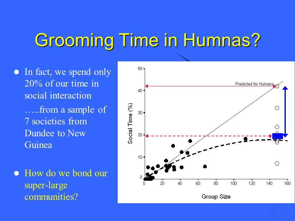 Grooming Time in Humnas? In fact, we spend only 20% of our time in social interaction …..from a sample of 7 societies from Dundee to New Guinea How do