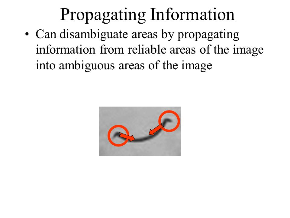 Propagating Information Can disambiguate areas by propagating information from reliable areas of the image into ambiguous areas of the image