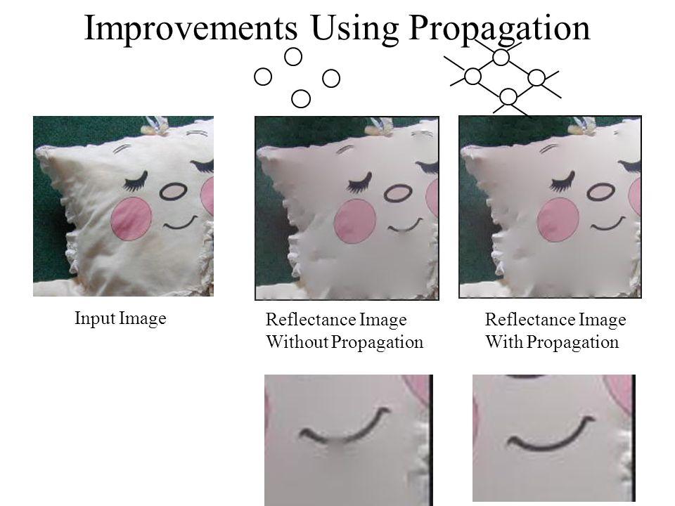 Improvements Using Propagation Input Image Reflectance Image With Propagation Reflectance Image Without Propagation