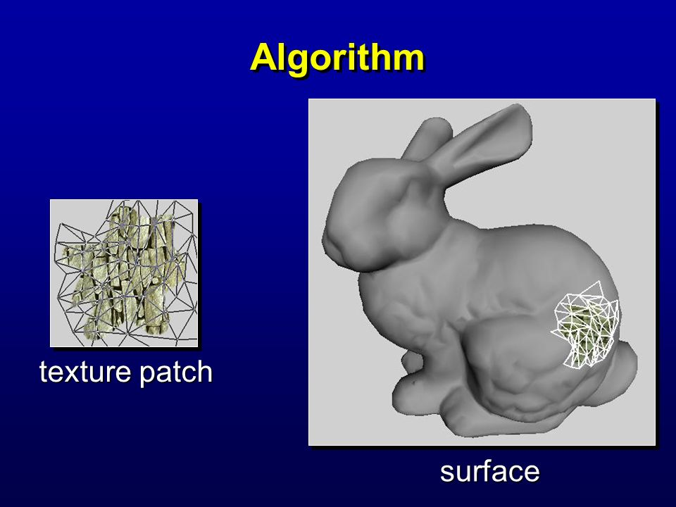 Algorithm texture patch surface