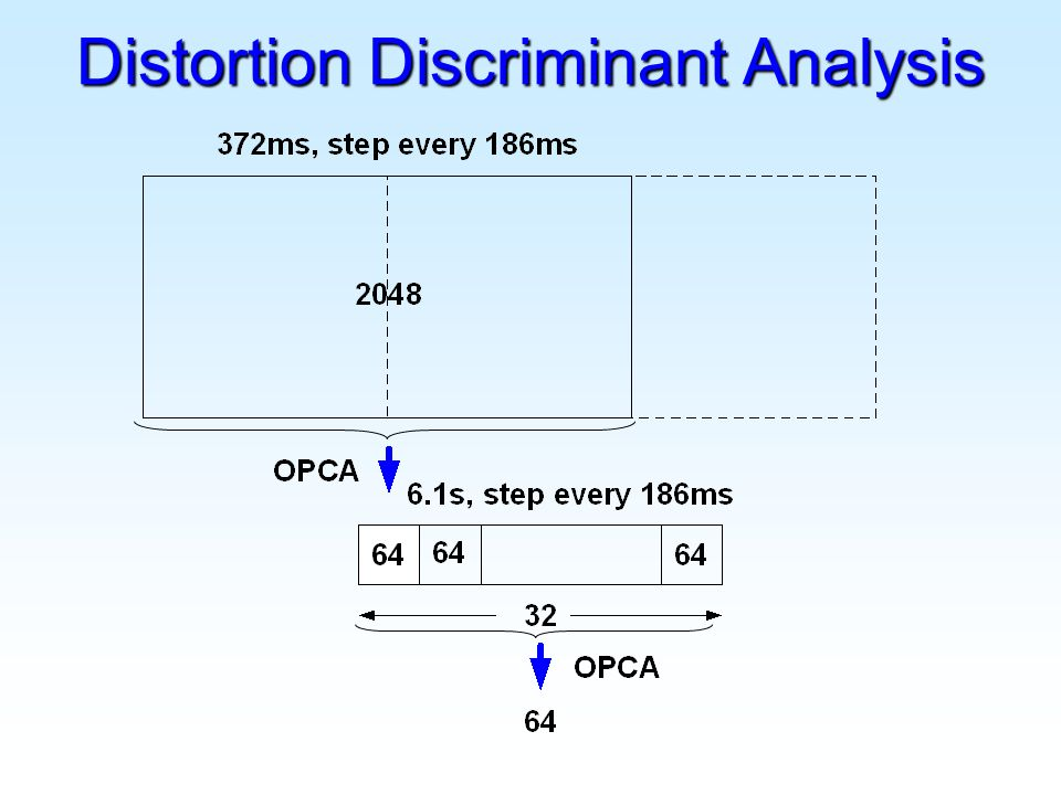 Distortion Discriminant Analysis
