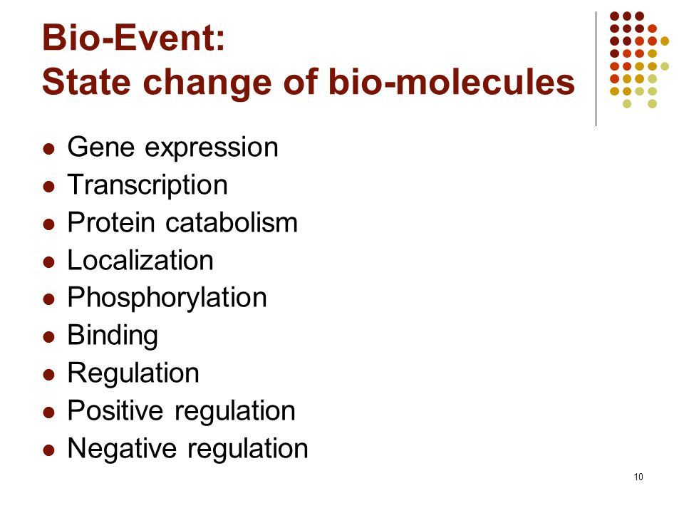 10 Bio-Event: State change of bio-molecules Gene expression Transcription Protein catabolism Localization Phosphorylation Binding Regulation Positive regulation Negative regulation