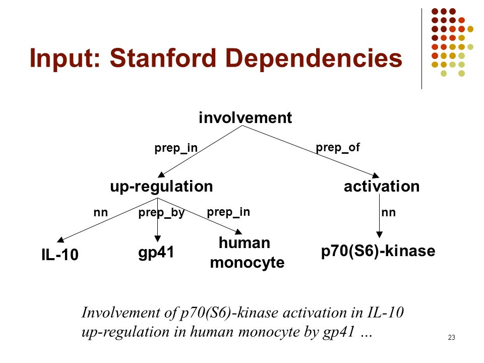 23 Input: Stanford Dependencies involvement up-regulation IL-10 human monocyte prep_in nnprep_by gp41 p70(S6)-kinase activation prep_in prep_of nn Involvement of p70(S6)-kinase activation in IL-10 up-regulation in human monocyte by gp41 …