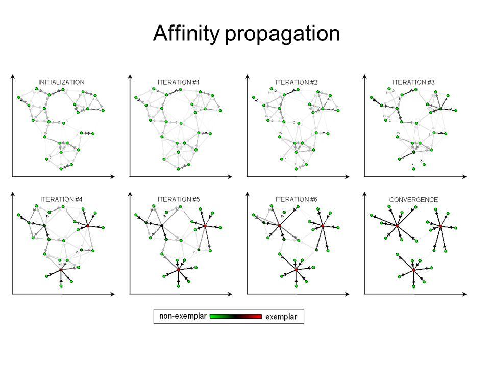 Affinity propagation