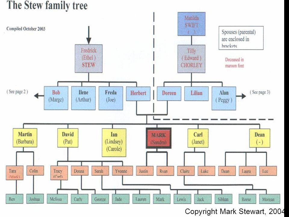 The Stew family tree Copyright Mark Stewart, 2004