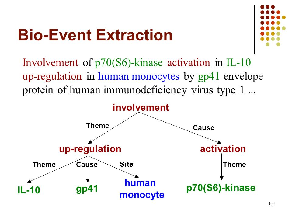 106 Bio-Event Extraction Involvement of p70(S6)-kinase activation in IL-10 up-regulation in human monocytes by gp41 envelope protein of human immunode