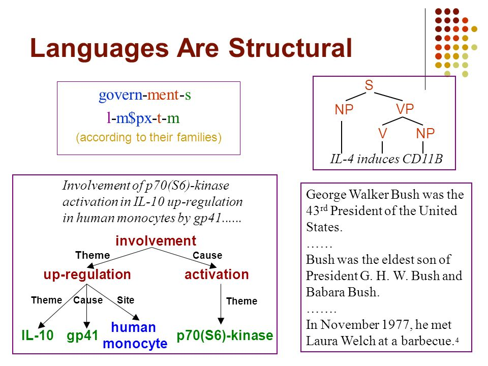 4 Languages Are Structural govern-ment-s l-m$px-t-m (according to their families) S VNP VP IL-4 induces CD11B Involvement of p70(S6)-kinase activation