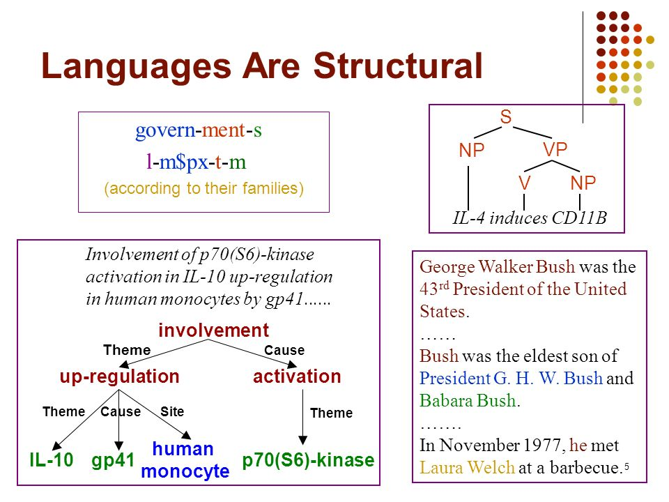 5 Languages Are Structural govern-ment-s l-m$px-t-m (according to their families) S VNP VP IL-4 induces CD11B Involvement of p70(S6)-kinase activation