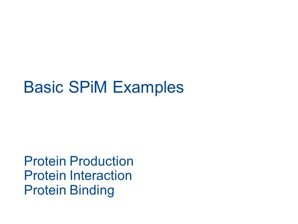 Basic SPiM Examples Protein Production Protein Interaction Protein Binding