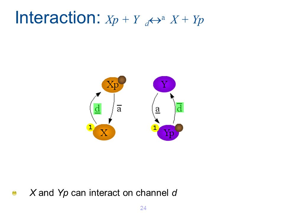 Interaction: Xp + Y d a X + Yp X and Yp can interact on channel d 24 1 1
