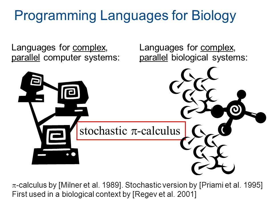 Programming Languages for Biology Languages for complex, parallel computer systems: Languages for complex, parallel biological systems: stochastic -ca