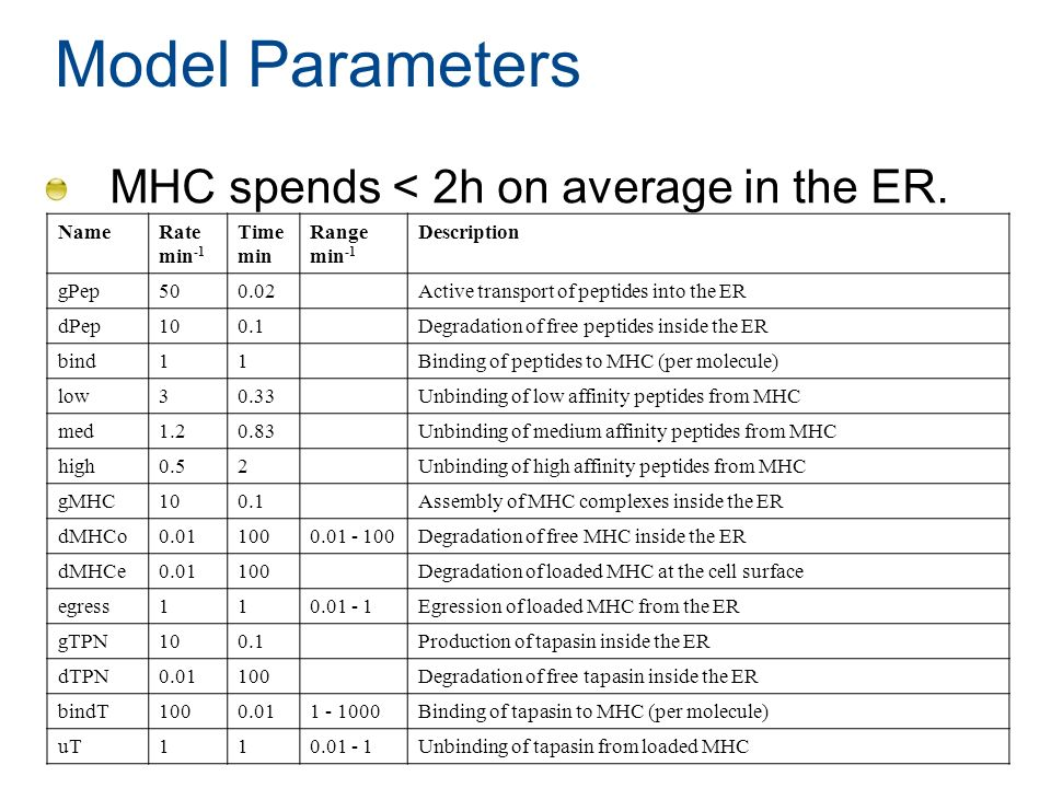 Model Parameters MHC spends < 2h on average in the ER. NameRate min -1 Time min Range min -1 Description gPep500.02Active transport of peptides into t