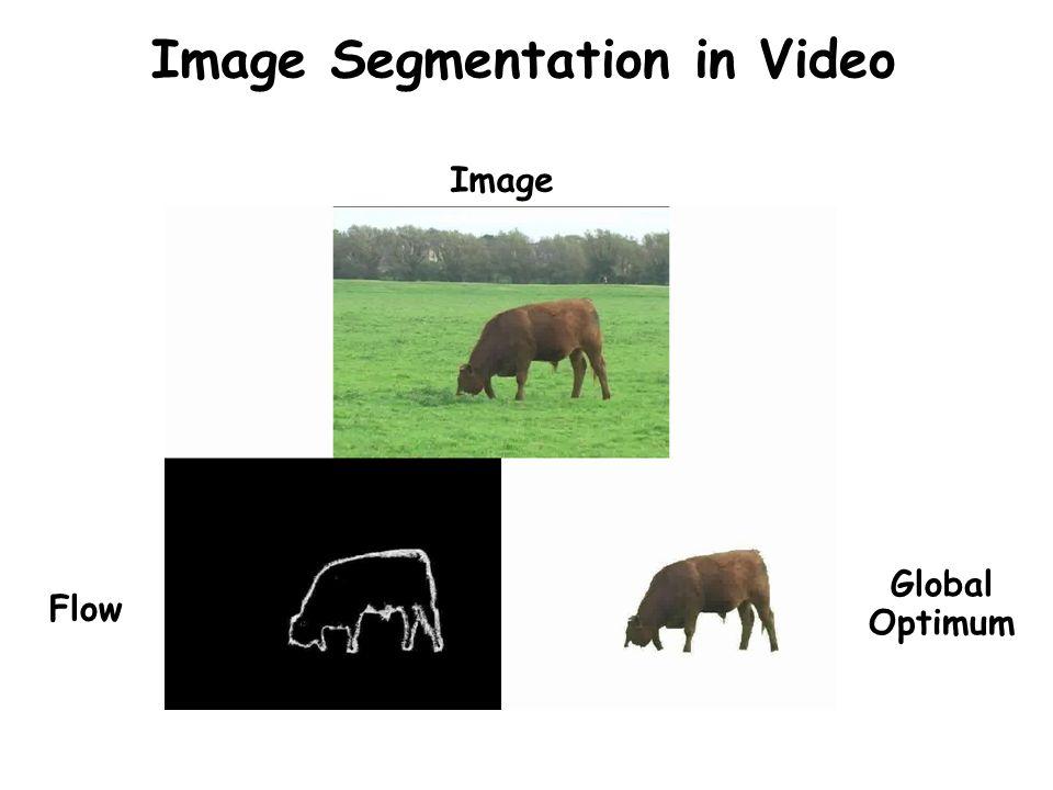 Image Segmentation in Video Image Flow Global Optimum