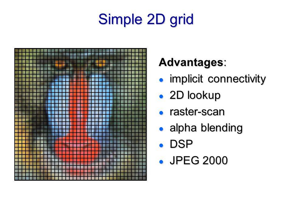 Simple 2D grid Advantages: l implicit connectivity l 2D lookup l raster-scan l alpha blending l DSP l JPEG 2000