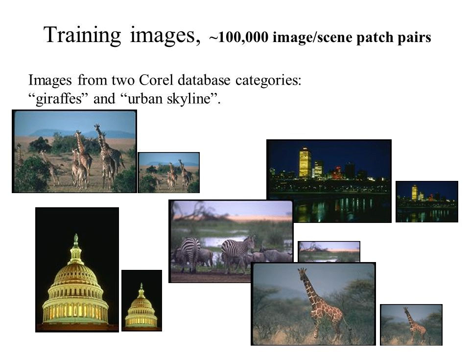 31 Training images, ~100,000 image/scene patch pairs Images from two Corel database categories: giraffes and urban skyline.