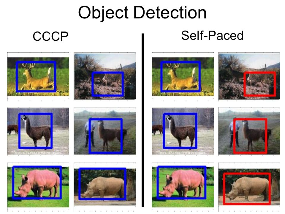 Object Detection CCCP Self-Paced