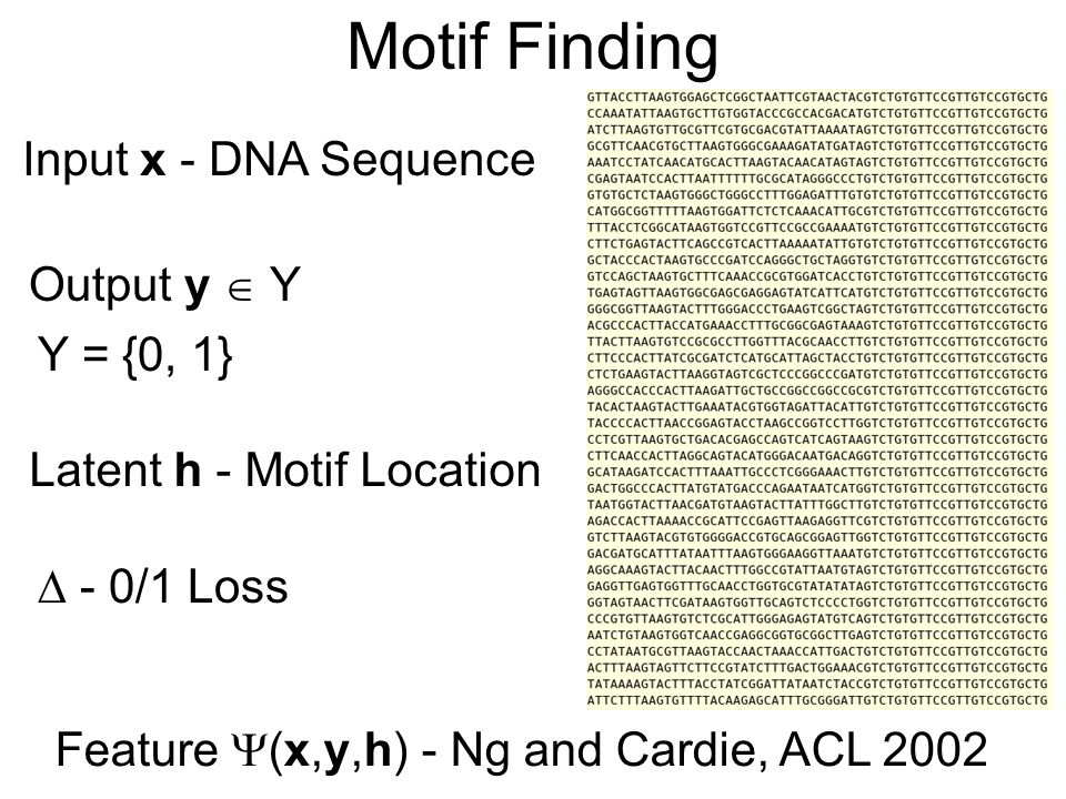 Motif Finding Feature (x,y,h) - Ng and Cardie, ACL 2002 Input x - DNA Sequence Output y Y Y = {0, 1} Latent h - Motif Location - 0/1 Loss