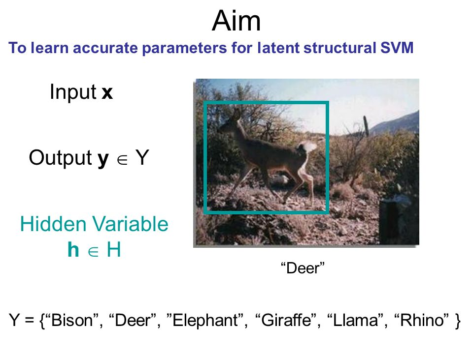 Aim To learn accurate parameters for latent structural SVM Input x Output y Y Deer Hidden Variable h H Y = {Bison, Deer, Elephant, Giraffe, Llama, Rhi