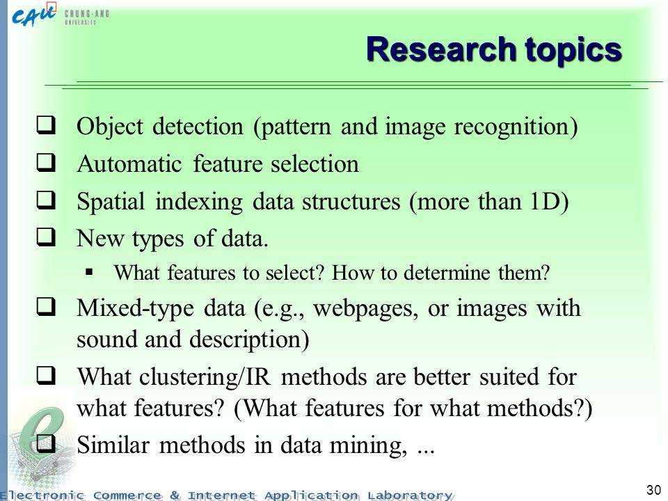 30 Research topics Object detection (pattern and image recognition) Automatic feature selection Spatial indexing data structures (more than 1D) New ty
