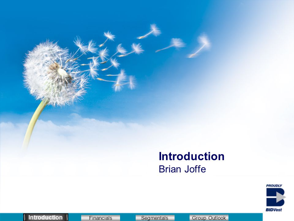 Introduction Brian Joffe Introduction Segmentals Financials Group Outlook