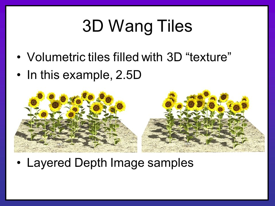 3D Wang Tiles Volumetric tiles filled with 3D texture In this example, 2.5D Layered Depth Image samples