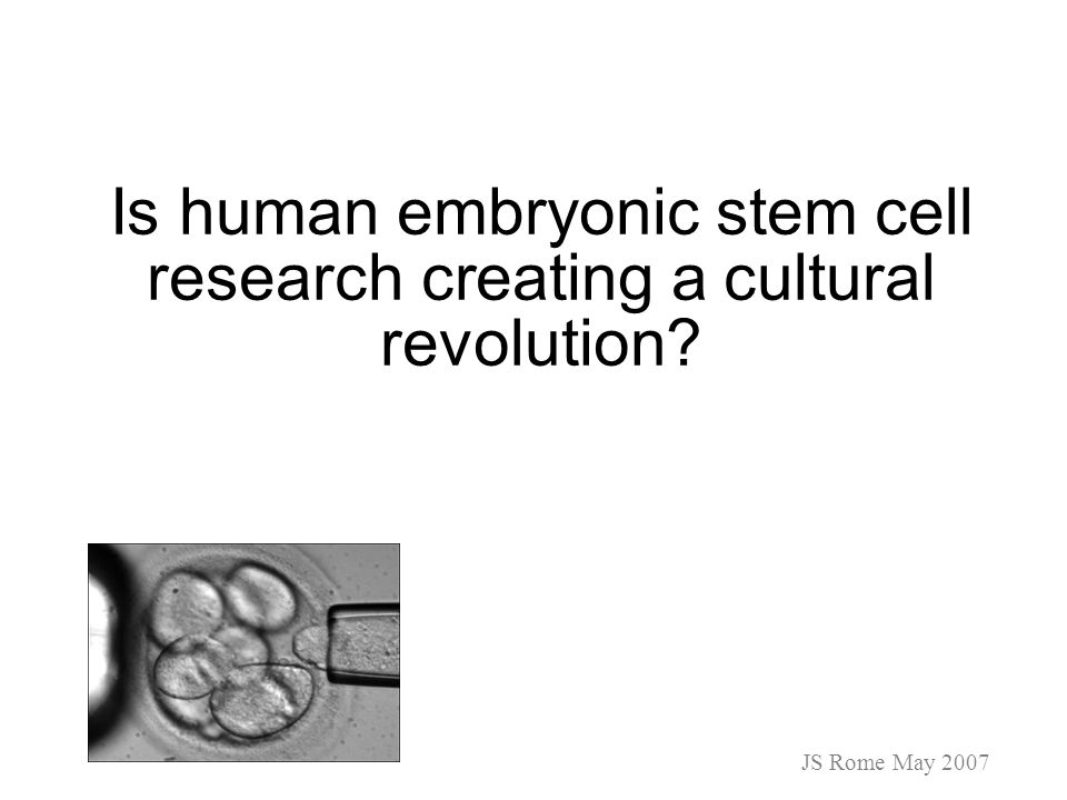 stem cells type and derivations (embryonic, blood cord, fetuses, somatic) different legal uses and restraints social and economical impact of the new technologies intellectual properties rights ethical implications and policy considerations JS Rome May 2007