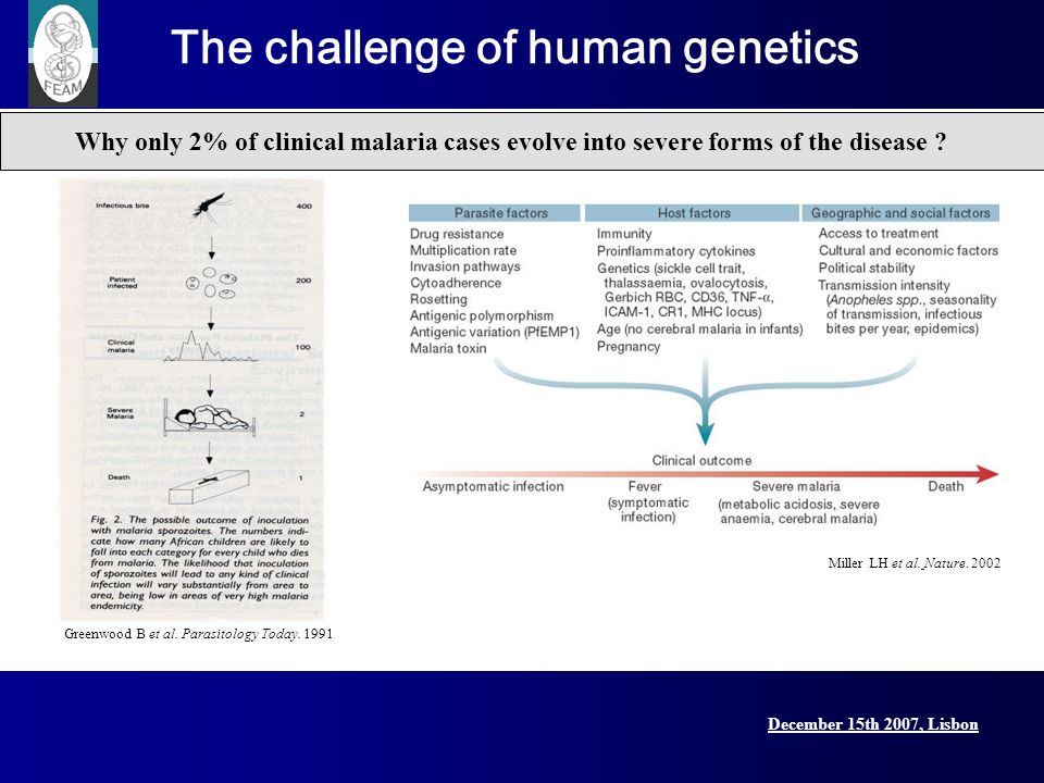 December 15th 2007, Lisbon Lisbon Conference, 15 December 2007 Miller LH et al. Nature. 2002 Why only 2% of clinical malaria cases evolve into severe