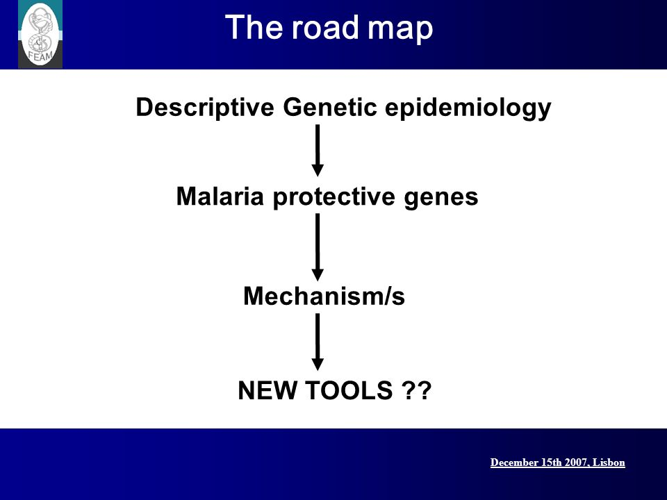 MalariaGEN December 15th 2007, Lisbon Lisbon Conference, 15 December 2007 Global network for genomic epidemiology of malaria $16.4 million funding from Grand Challenges for Global Health Funded by the Bill and Melinda Gates Foundation, through the Foundation for the National Institute for Health, and the Wellcome Trust
