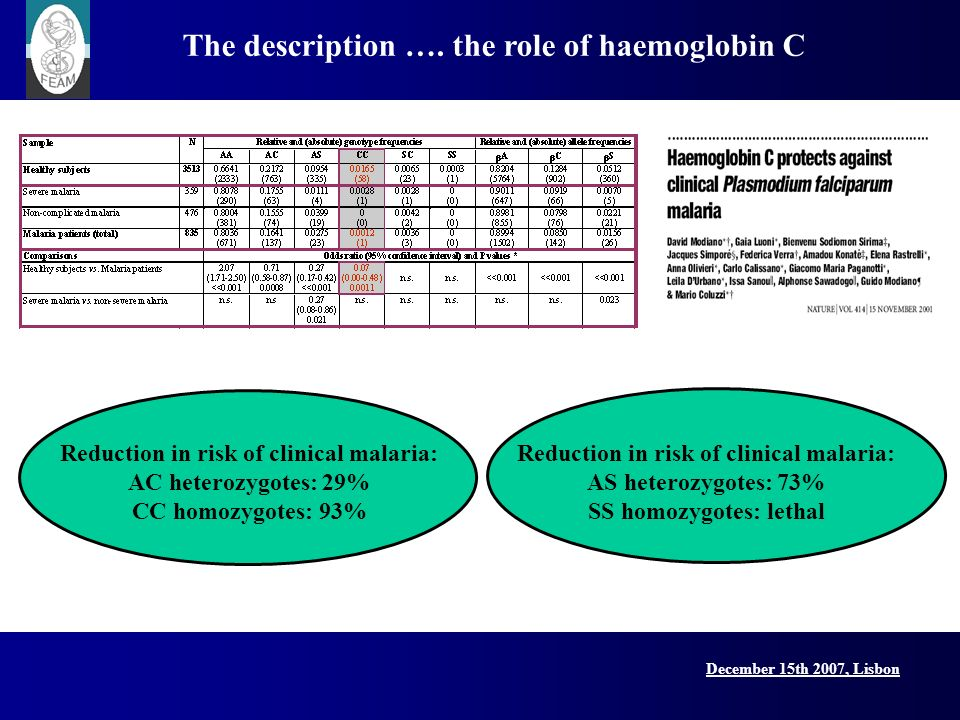 December 15th 2007, Lisbon The description …. the role of haemoglobin C Reduction in risk of clinical malaria: AC heterozygotes: 29% CC homozygotes: 9