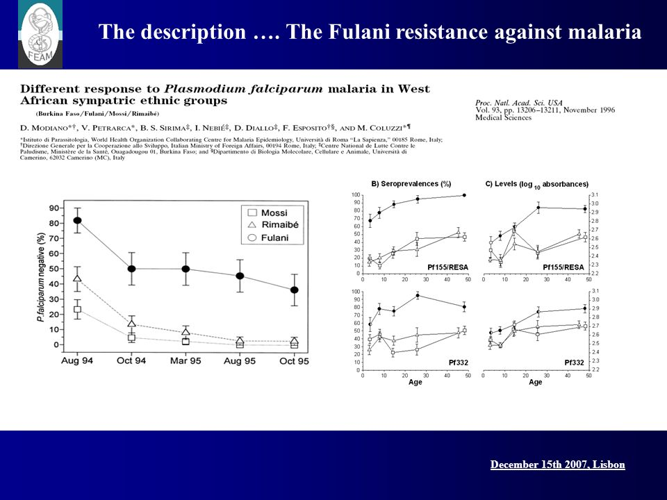 December 15th 2007, Lisbon Lisbon Conference, 15 December 2007 The mechanism Lower expression of genes determinant for Treg activity (TGF, TGF Rs, CTLA4, FOXP3) in Fulani compared to both Mossi and Europeans Proc.