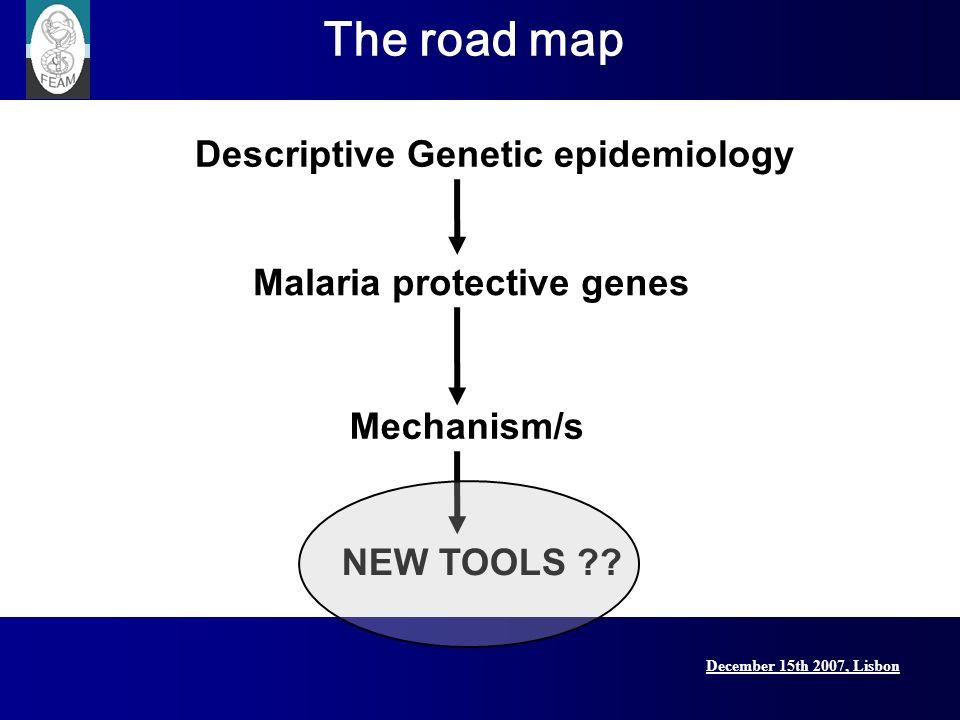 December 15th 2007, Lisbon Lisbon Conference, 15 December 2007 Descriptive Genetic epidemiology Mechanism/s Malaria protective genes NEW TOOLS ?? The