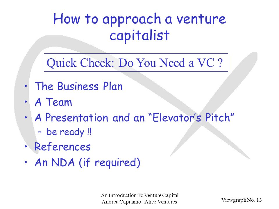 Viewgraph No. 13 An Introduction To Venture Capital Andrea Capitanio - Alice Ventures How to approach a venture capitalist The Business Plan A Team A