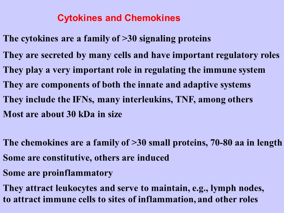 Cytokines and Chemokines The cytokines are a family of >30 signaling proteins They play a very important role in regulating the immune system They inc